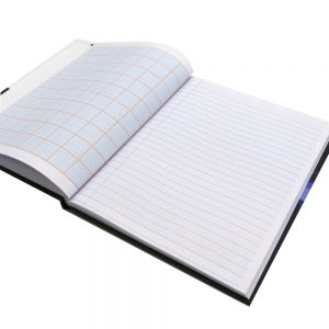 Scientific Notebook Einstein Open New
