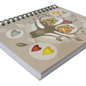 Premier A5 Wiro Notebook Journal 300 Pages Love Owls Front 2
