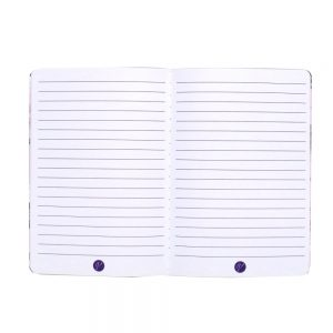 DBV A5 Notebooks 3 Pack Open