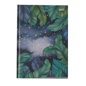 2022 A5 Week to View Diary Starry Night Front