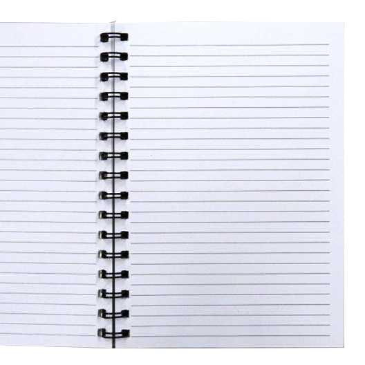 A5 Words of Genius Wirebound Notebook - Gems