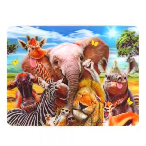 Howard Robinson Super 3D Moving Postcard, Africa Selfie