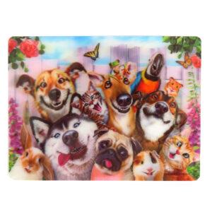 Howard Robinson Super 3D Moving Postcard, Pet Selfie