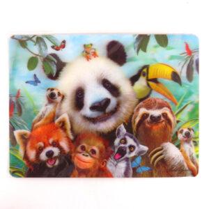 Howard Robinson Super 3D Moving Postcard, Zoo Selfie
