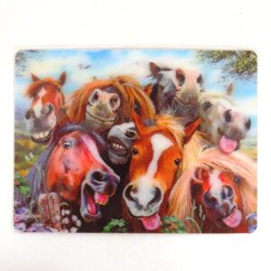 Howard Robinson Super 3D Moving Postcard, Horse Selfie