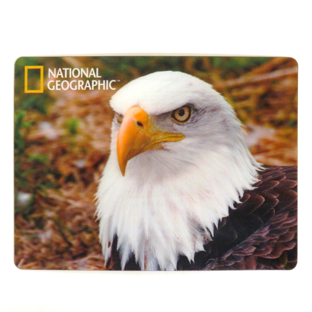 National Geographic Super 3D Moving Postcard, Bald Eagle