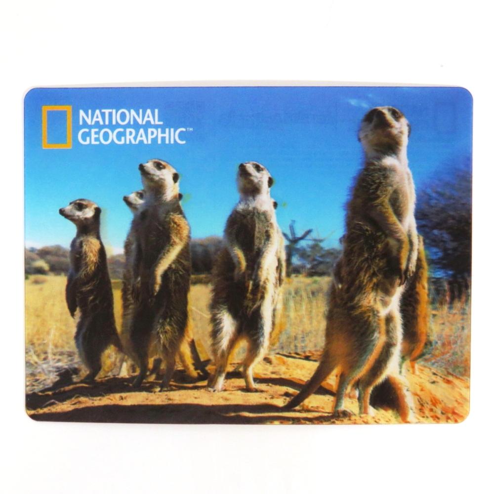 National Geographic Super 3D Moving Postcard, Meerkats