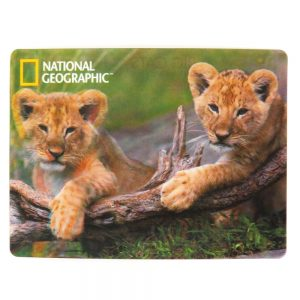 National Geographic Super 3D Moving Postcard, African Lion Cubs