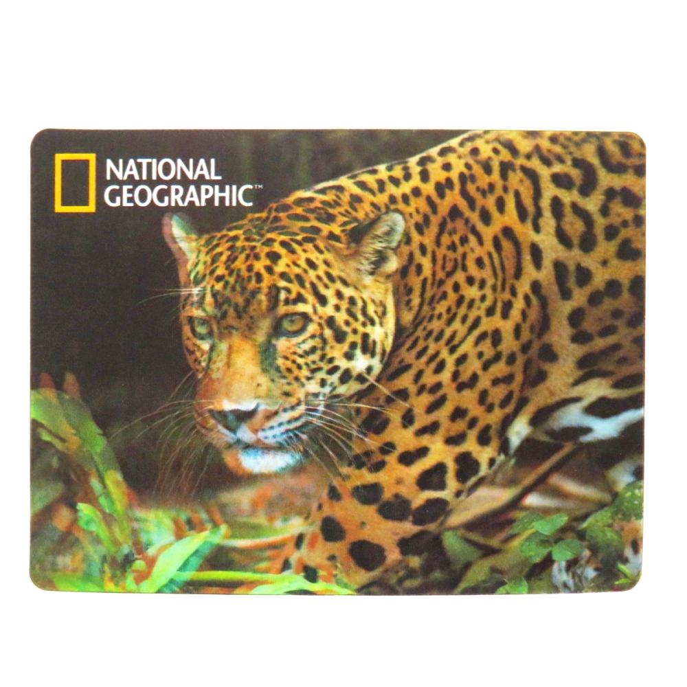National Geographic Super 3D Moving Postcard, Jaguar