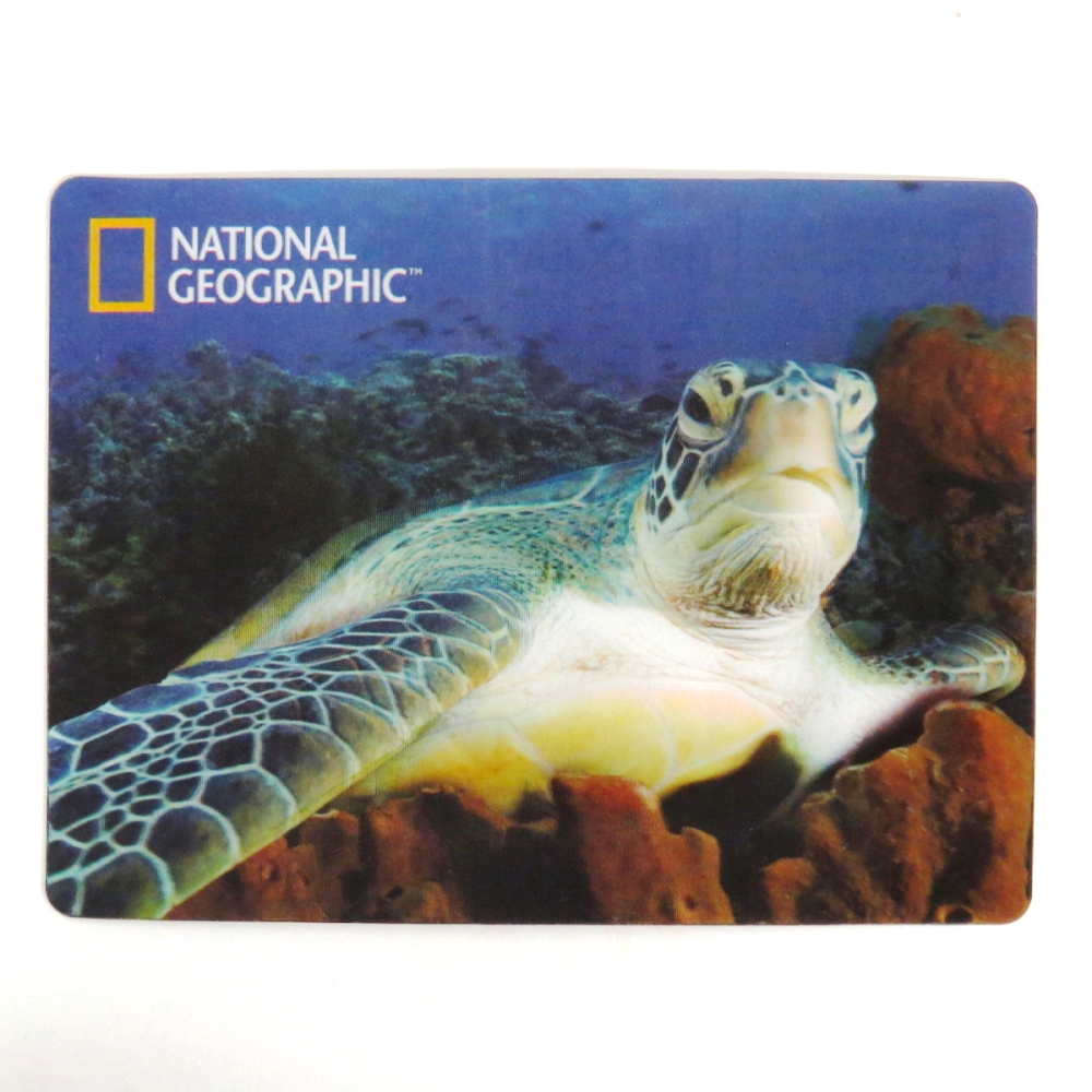 National Geographic Super 3D Moving Postcard, Sea Turtle
