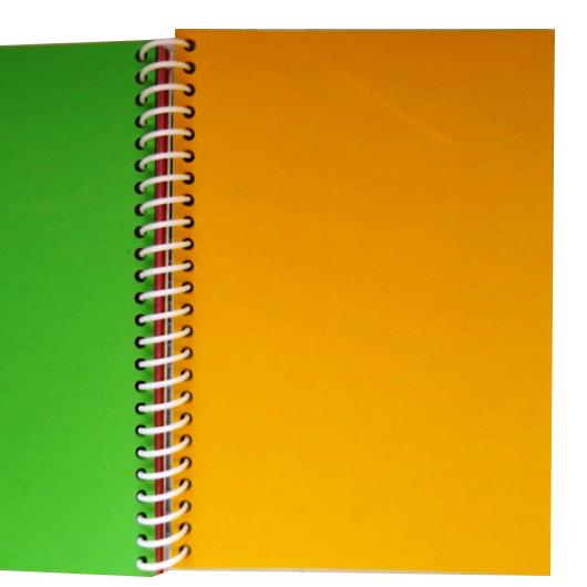 A5 Rascals Creative Notebook - Alamo Croc